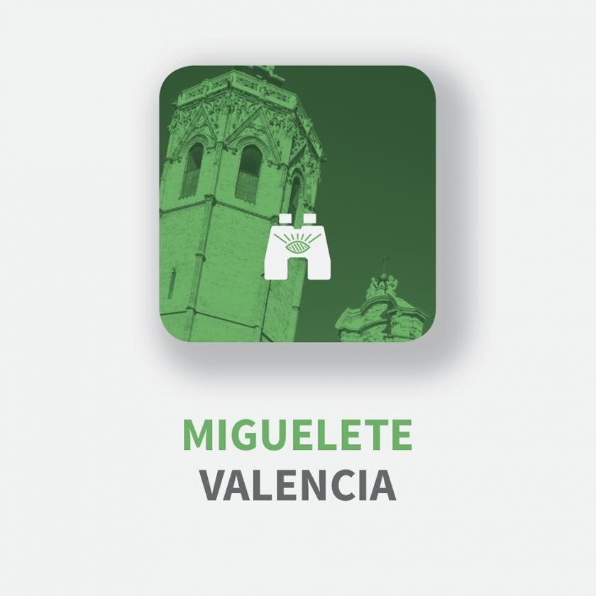 valencia_miguelete